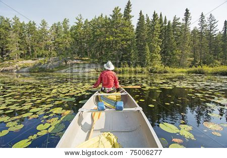 Canoer Relaxing In The Lily Pads