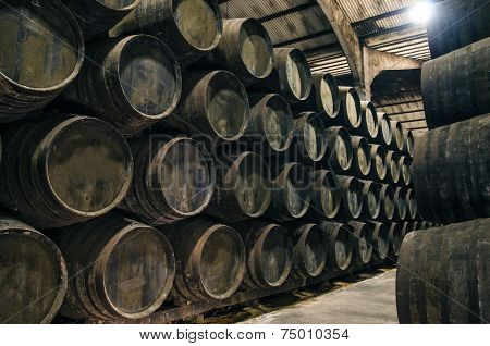 Old Cellar With Barrels
