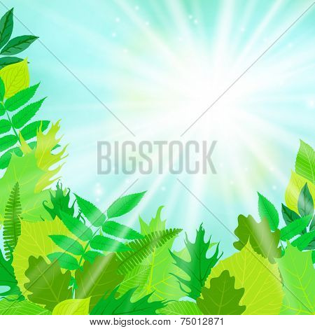 Spring card background with sun and leaves