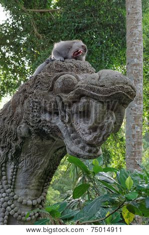 crab-eating macaque or long-tailed macaque or macaca fascicularis on dragon statue