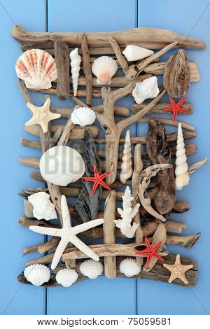 Sea shell and driftwood abstract collage on wooden blue background.