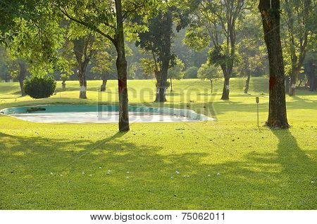 The portrait of a golf course