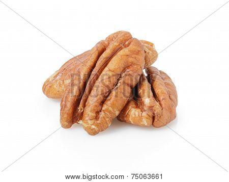 Pekan Nuts Kernels