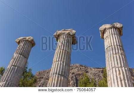 Athena Temple Columns
