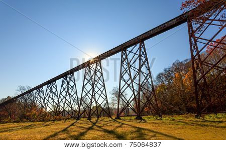 Tulip Trestle Sunburst