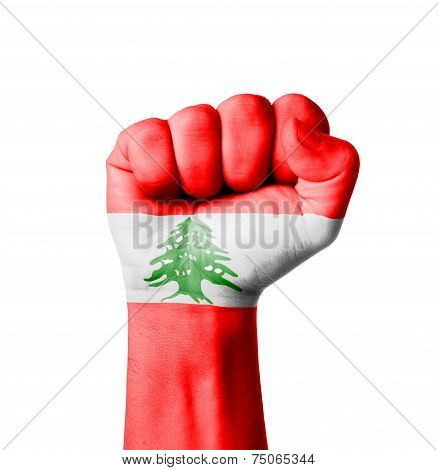 Fist Of Lebanon Flag Painted