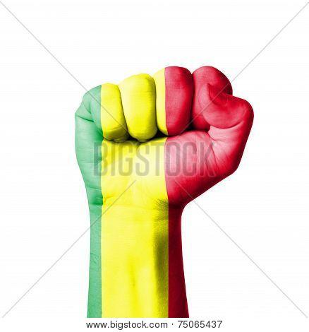 Fist Of Mali Flag Painted