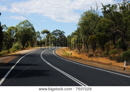 Road Passing Through The Bush
