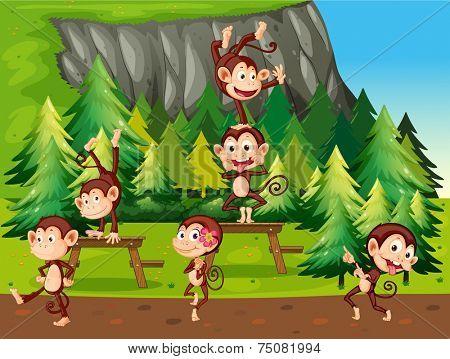 illustration of many monkeys in the park