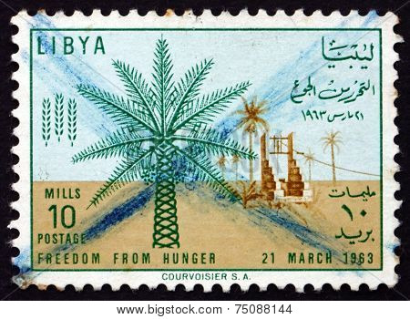 Postage Stamp Libya 1963 Date Palm And Well