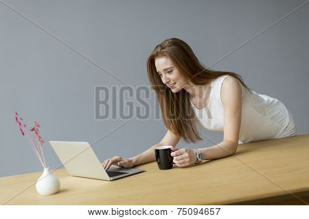Young Woman With Laptop In The Office