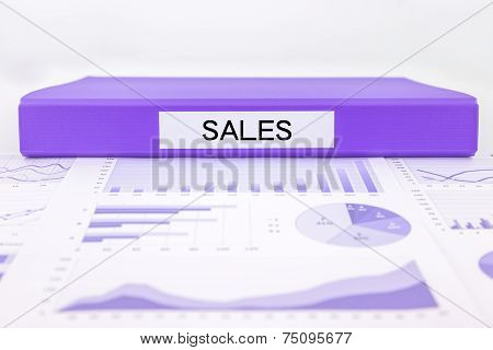 Sale Reports And  Marketing Graph Analysis Of Business Income
