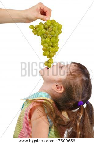 Funny Little Girl Eating Grapes From Hand
