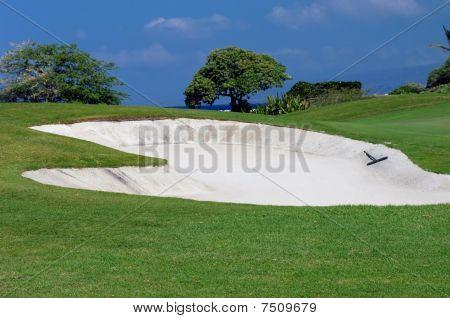 Big Island Golf Experience
