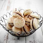 picture of french pastry  - French macaroons with chocolate filling and cocoa powder - JPG