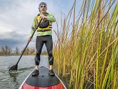 image of cattail  - senior paddler in life jacket enjoying stand up paddling on lake - JPG