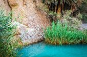 foto of tozeur  - Little pond in Chebika oasis at border of Sahara Tunisia Africa - JPG
