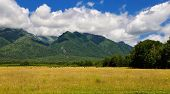 picture of siberia  - Pasture at the foot of the mountains of Siberia - JPG
