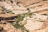 image of tozeur  - Mountain oasis Tamerza in Tunisia near the border with Algeria - JPG