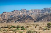 stock photo of tozeur  - Atlas Mountains Chebika border of Sahara Tunisia - JPG