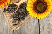 image of sunflower-seeds  - Sunflowers and seeds with spoon on wooden background - JPG