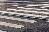 foto of zebra crossing  - Pedestrian zebra crossing white stripes on the road - JPG