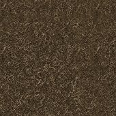 Weathered Wood Texture Surface poster