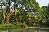 stock photo of deforestation  - Destruction of forest deforestation and damaging environment - JPG