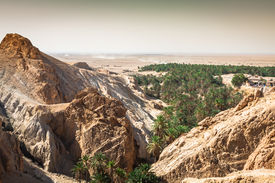 picture of oasis  - Mountain oasis Chebika at border of Sahara Tunisia Africa - JPG