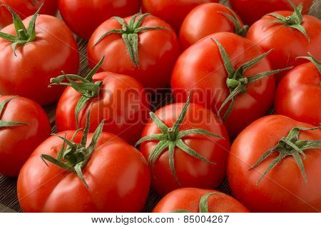 red tomatoes background. Group of tomatoes