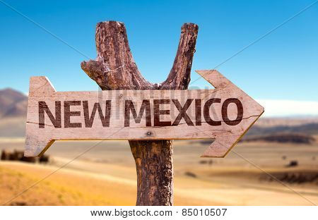 New Mexico wooden sign with a desert background