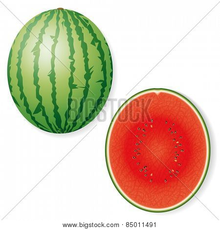 Whole and Halved Watermelon Fruit Vector Icon. Vector Illustration of whole and half watermelon isolated. Shadows on separate layer.