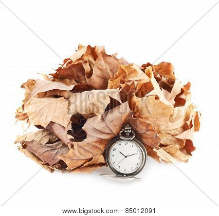 Opened pocket watch and dried leaves