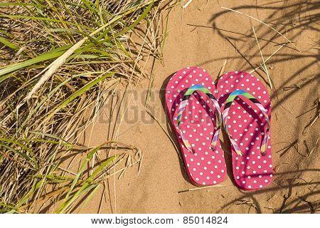 Pink flip flops at the beach.