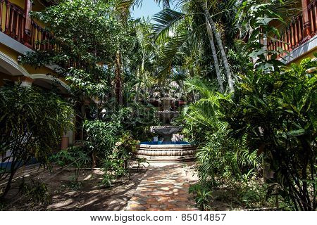 Garden From Colonial House From Nicaragua