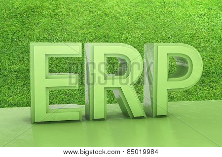 Enterprise Resource Planning - 3D Rendered Illustration