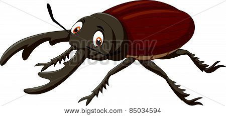 Cartoon stag beetle