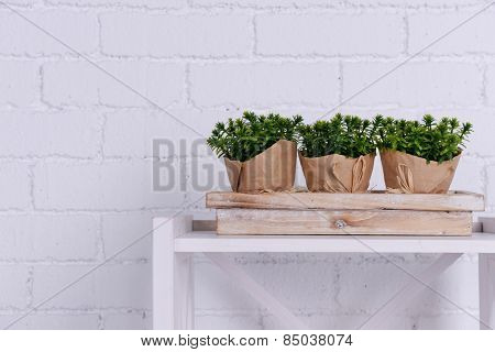 Three pots of flowers on wooden stand on tabletop on white brick wall background