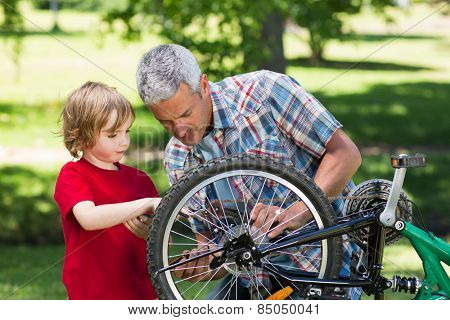 Father and his son fixing a bike on a sunny day