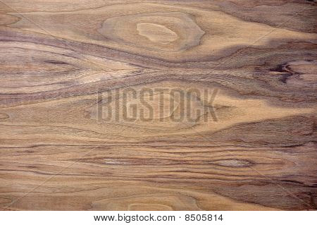 Black Walnut Wood Texture