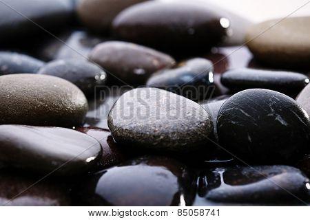 Wet sea pebbles, macro view