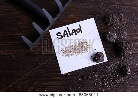 Salad seeds on piece of paper with ground and rake on wooden background