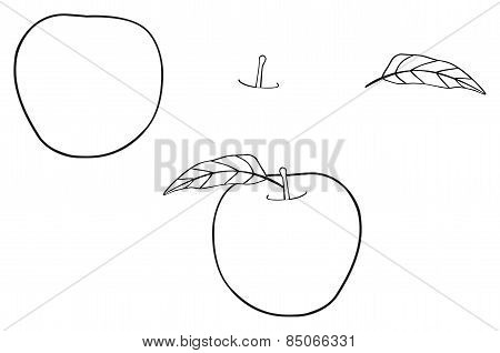 Delightful Garden - Round Apple With One Leaf