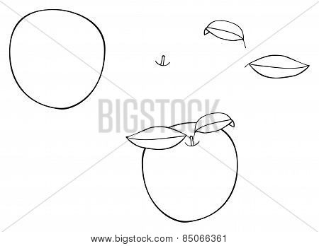 Delightful Garden - Round Apple With Two Leaves
