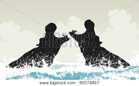 Illustration of two hippopotamuses fighting in water