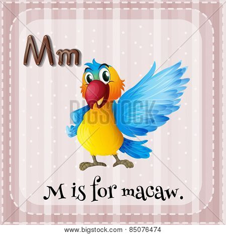 Alphabet M is for macaw