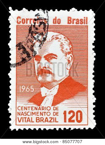Vital Brazil 1965
