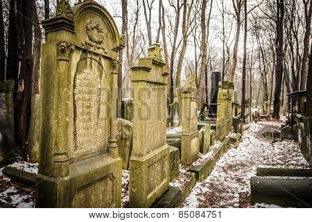 Warsaw, Poland - January 1, 2015: Historic old Jewish Cemetery in winter