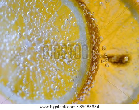 Lemon Slice in Clear Soda Water