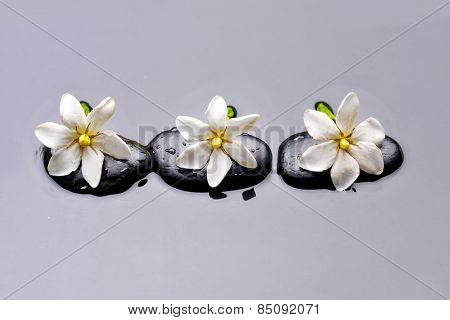 Three orchid with therapy stones